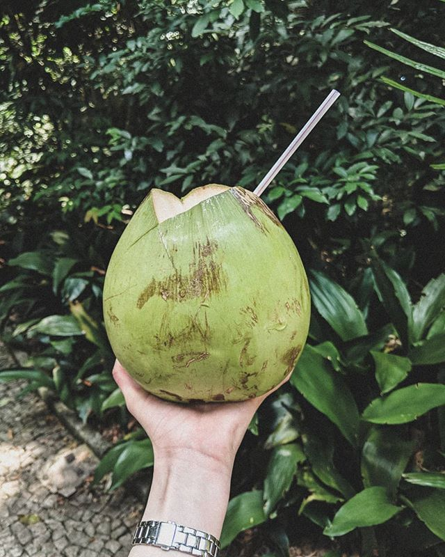 Fresh coconuts in the park! . . . #discoverglobe #travelandlife #exploremore #lifeofadventure #visualsoflife #passionpassport #artofvisuals #folkmagazine #worldplaces #wonderful_places #beautifuldestinations #letsgo #alwaysgo #letsgosomewhere #brazil #saopaulo #southamerica #coconut