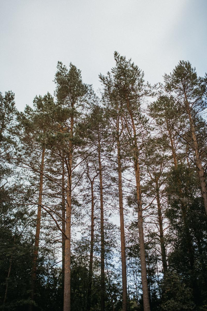 candinski-tornio-finland-8845.jpg