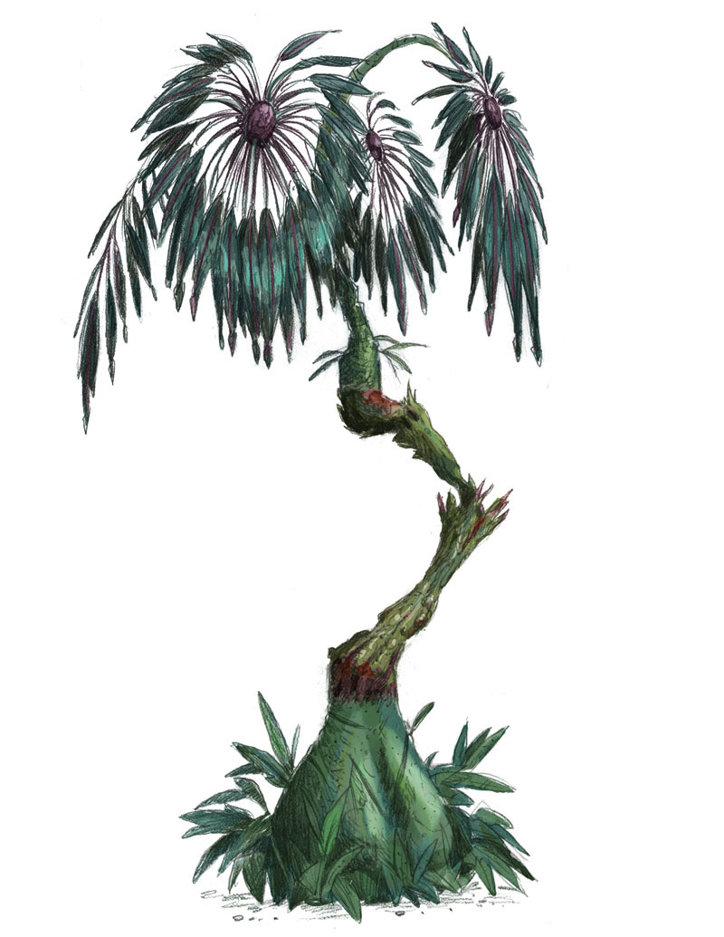 Concept   art / Avatar Plant Designer game    Agency: Belle & Wissell   Client: Experience Music Project (  2011)