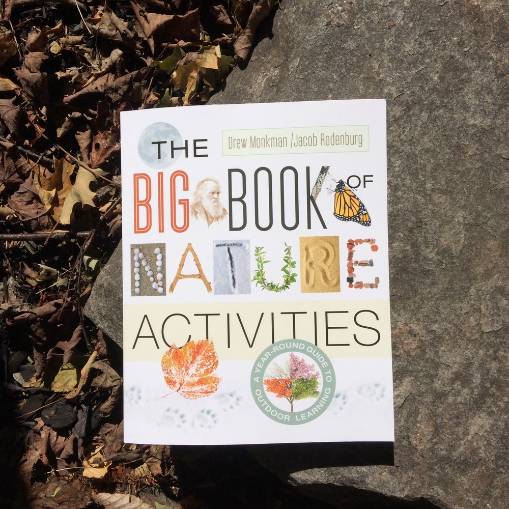 big-book-of-nature-activities