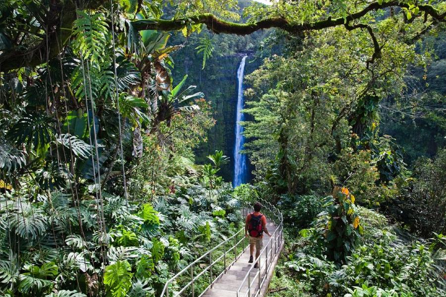Find waterfalls on the way to Hana.