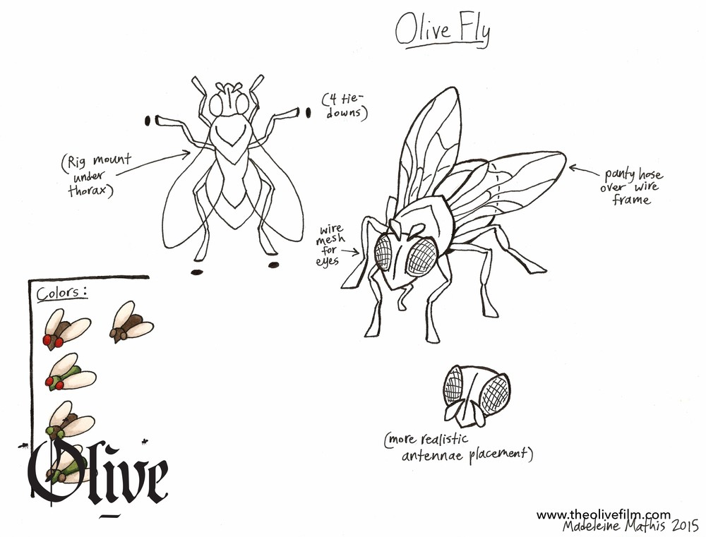 Fly Design.jpg