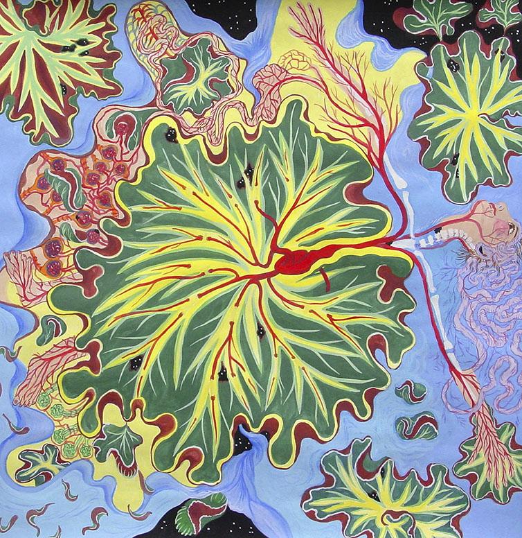 Begonia Woman