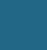 Leaf Software Solutions Logo.png