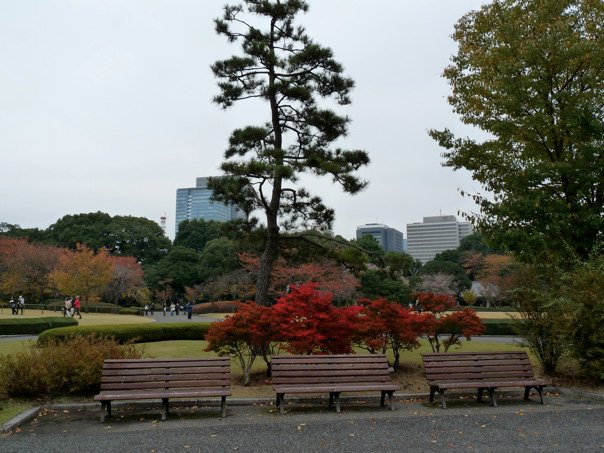 tokyo gardens.jpg