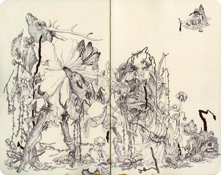 Fungi II