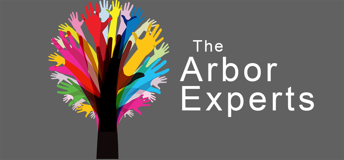 The Arbor Experts