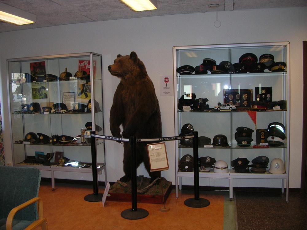 Björnen i polishuset