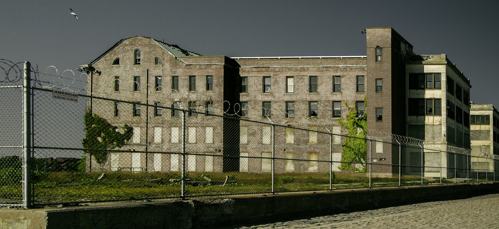 Abandoned-2.jpg