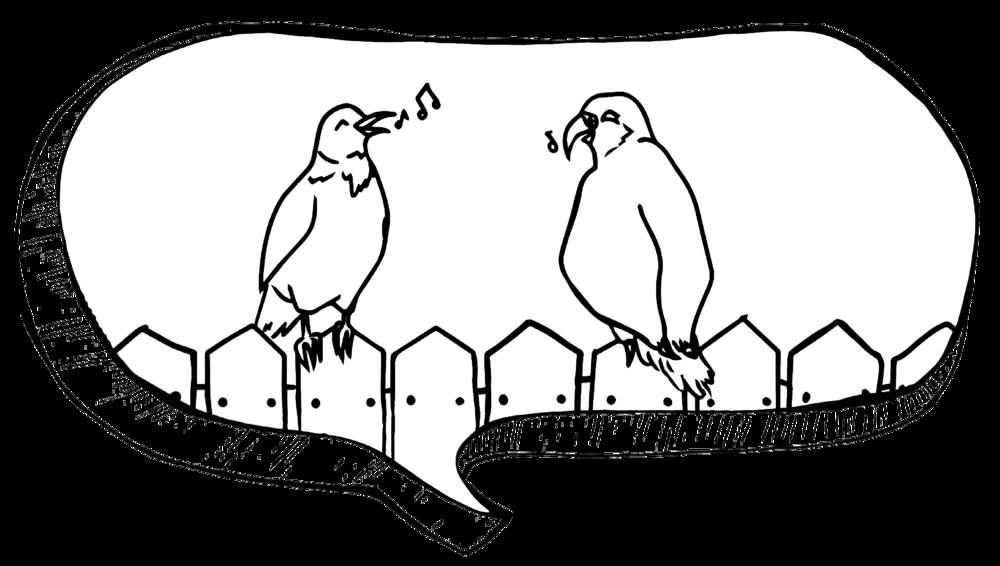 birdbubble.png