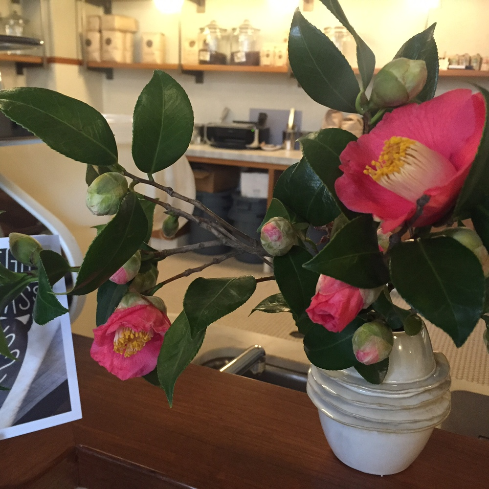 Photo: Angela Eaton Pretty Flowers in the Coffee Shop Today.