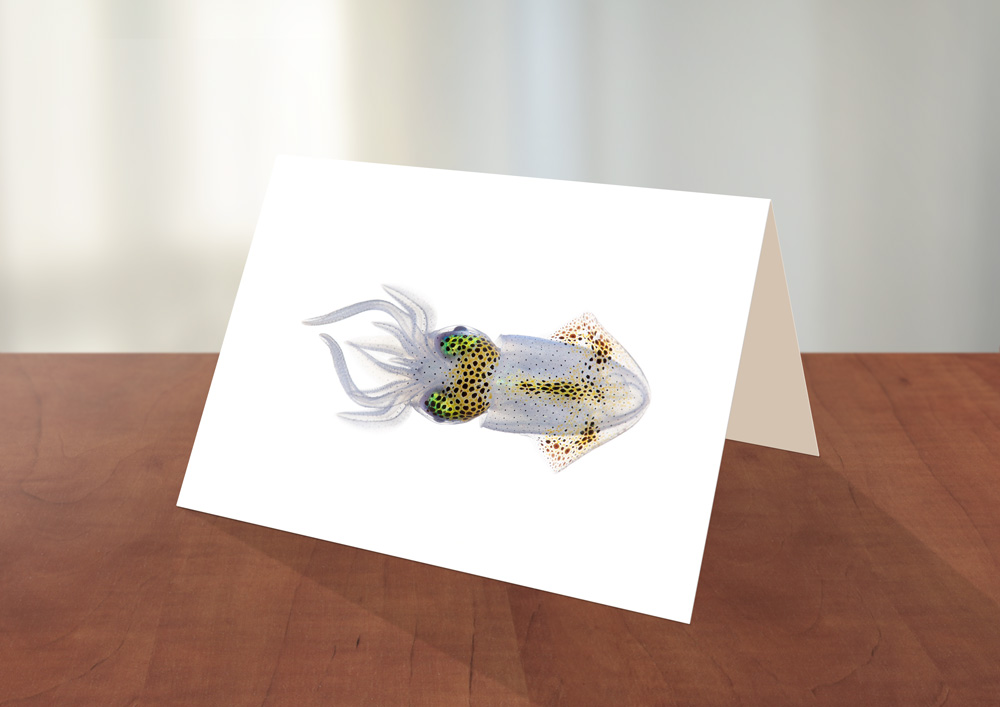 007-Squid-Greeting_card_Sample.jpg