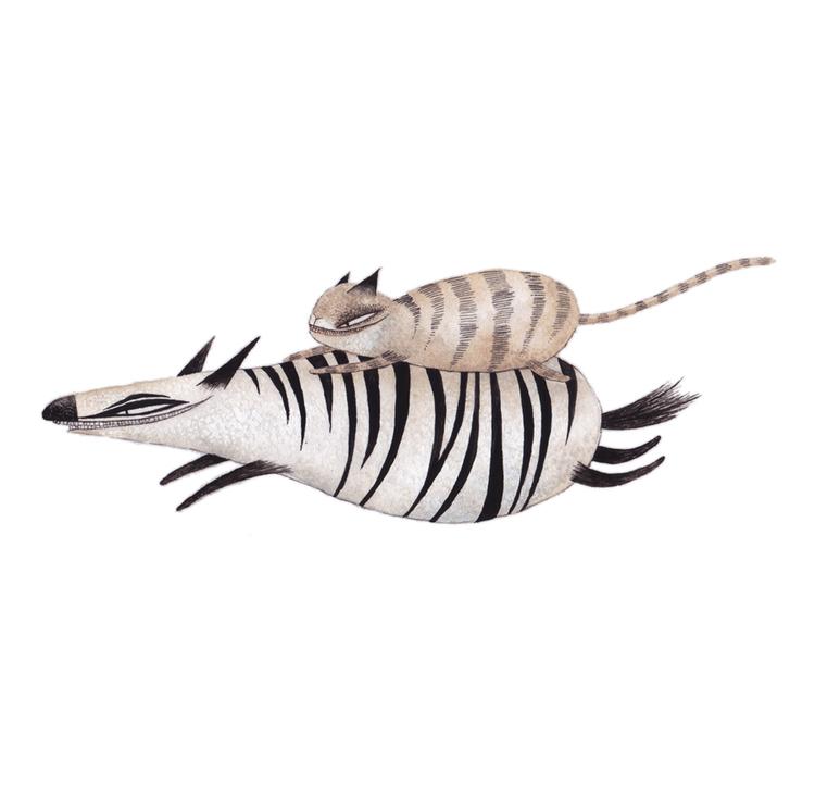 zebra_xxs.jpg