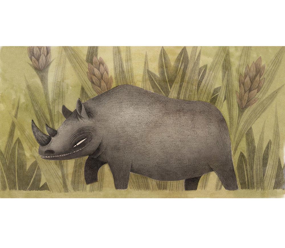 rhinos5_flat.jpg