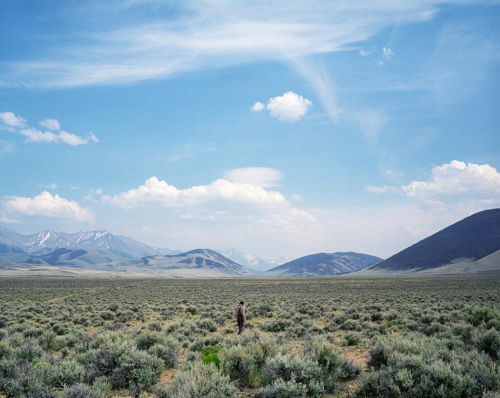 Sage Field  © Adrain Chesser