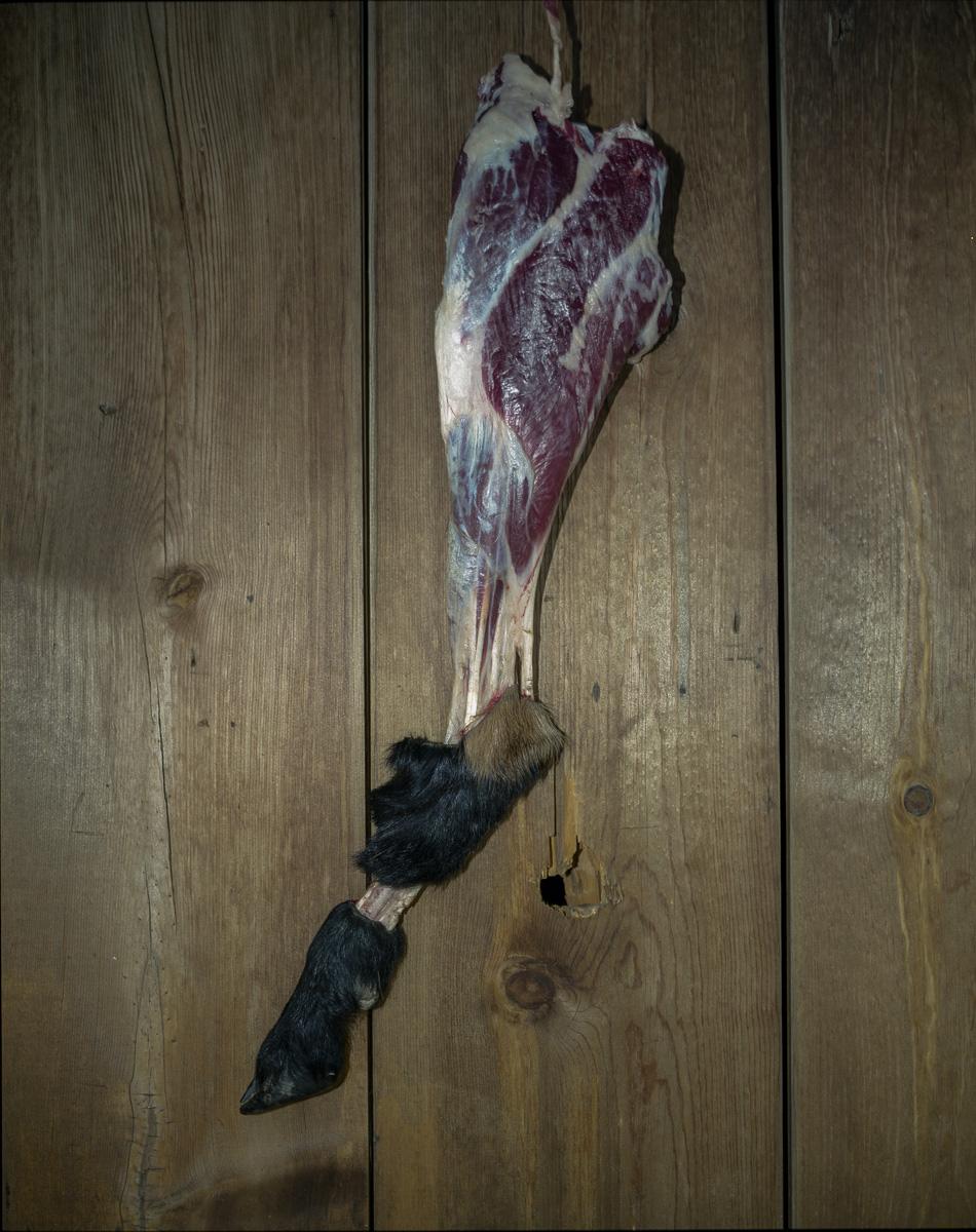 Steak With A Hoof  © Adrain Chesser