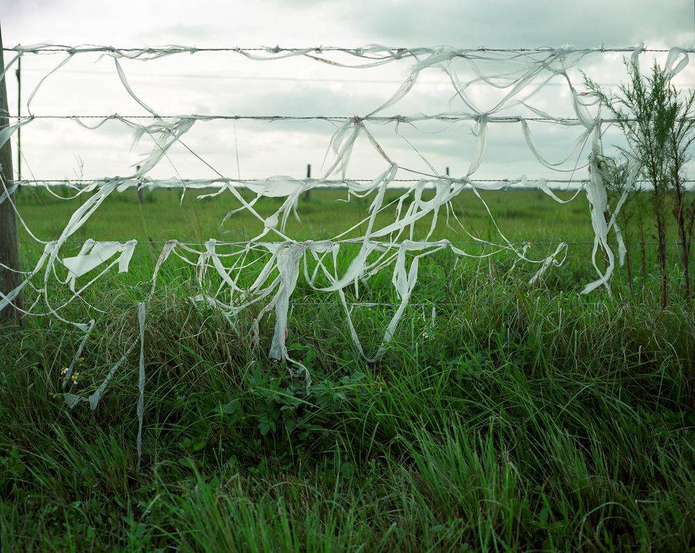 Barbed Wire Fence  © Adrain Chesser