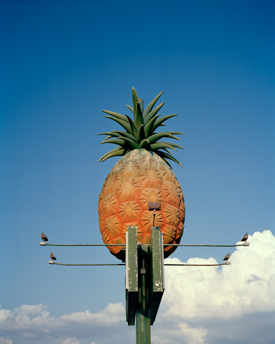 Pineapple  © Adrain Chesser