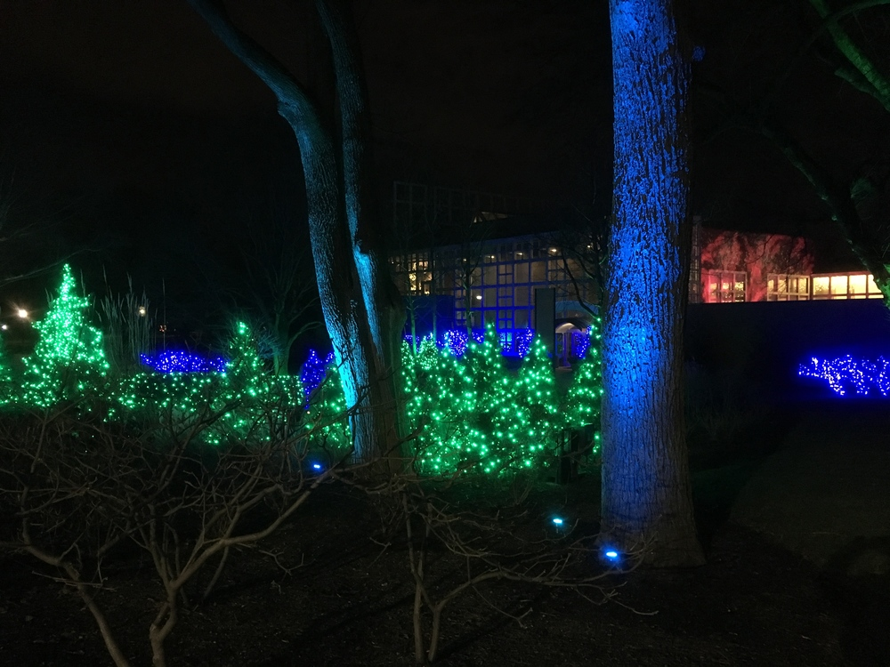 We drove to Franklin Park Conservatory to see if they had lights!