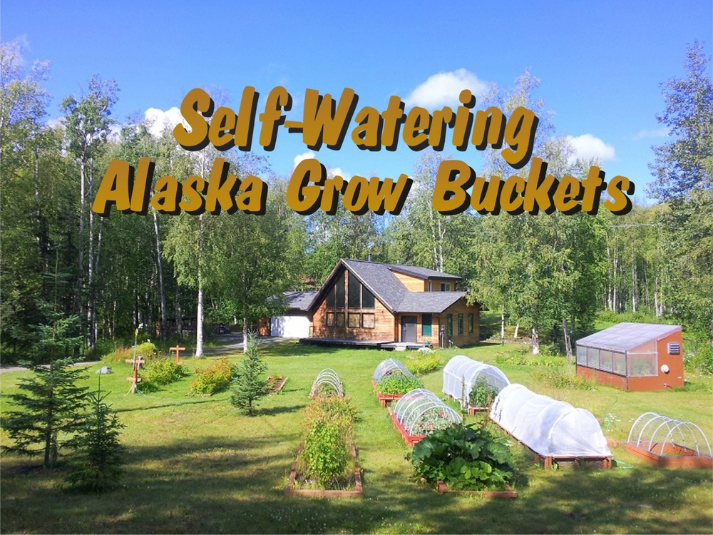 Making your own Alaska Grow Bucket only takes 5 minutes Watch the video below