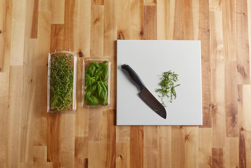 herb family-wide.jpg