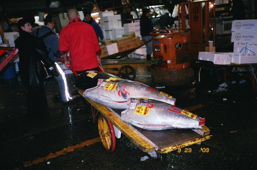 Tsukiji market 2004