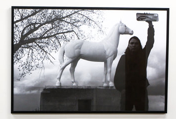 SB-BWF (Horse).jpg