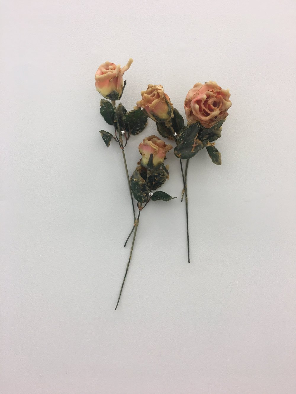 Aganetha Dyck, Three Flowers, 2018. Silk flowers, beeswax, honeycomb.