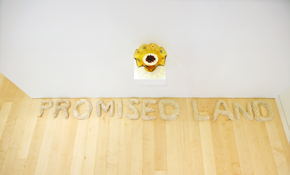 The Promised Land, 2011