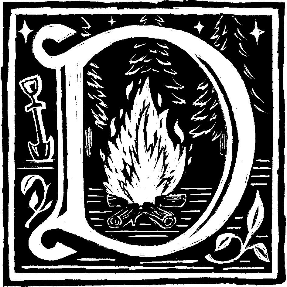 D1-01-Campfire.png