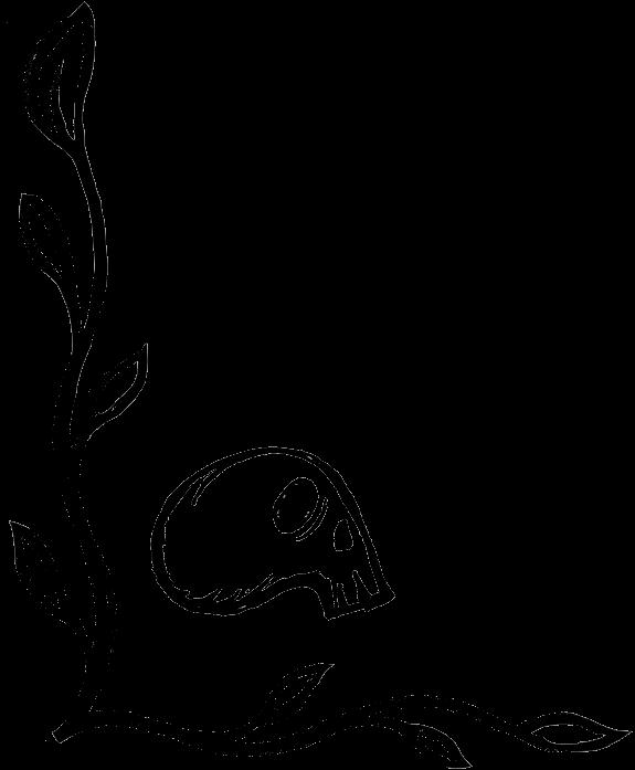 Corner-Skull-Bottom.png