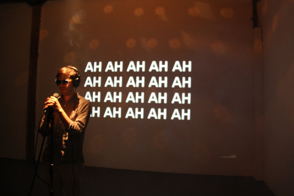 For One and For All karaoke installation performed. Photo: Julie Hammond.