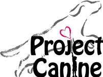 Project Canine Therapy Dogs