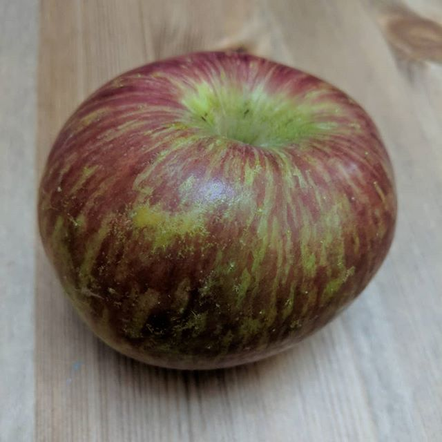 Probably the prettiest apple I've ever seen