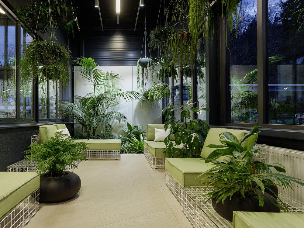 Bosch Automotive Steering - Neue Arbeitswelt 205, green office, multispace, Ruhegarten, plants, interior architecture