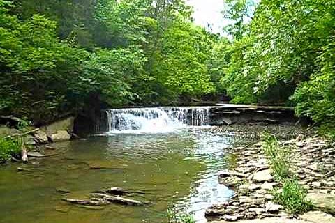 Wandering 1.jpgFlat Fork Ridge Parking Area at Caesar Creek State Park