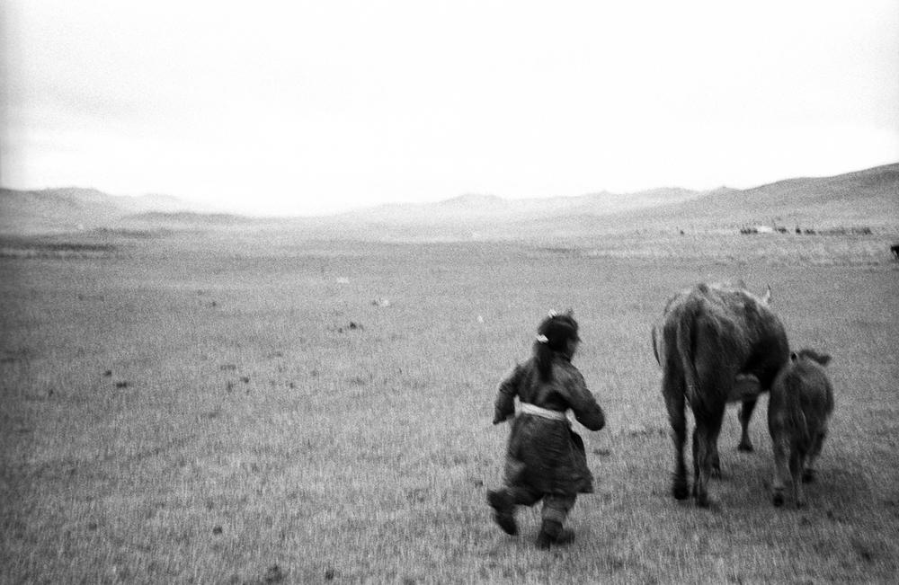 mongolei web4.jpg