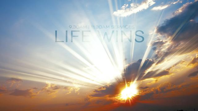 life-wins-smll-wbst-bnnr.jpg