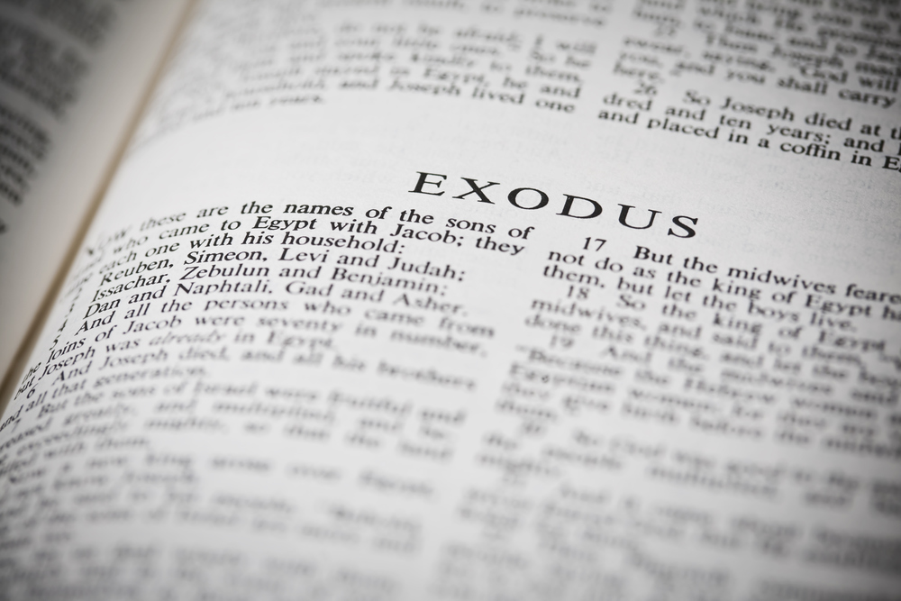 Learn more about the new exodus that is taking place and is now in progress on the escape route through the hostile desert of godlessness from slavery under the yoke of Pharaoh to freedom with God and their holy family in the promised land.   (Click the Image)