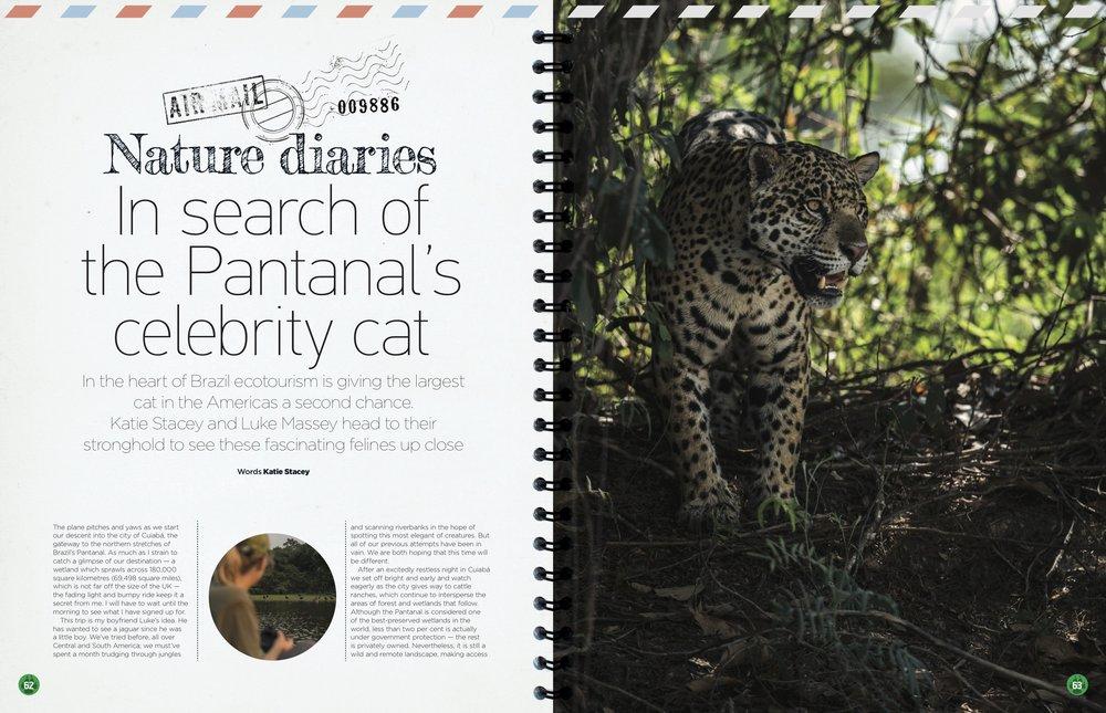Nature diaries- Jags.jpg