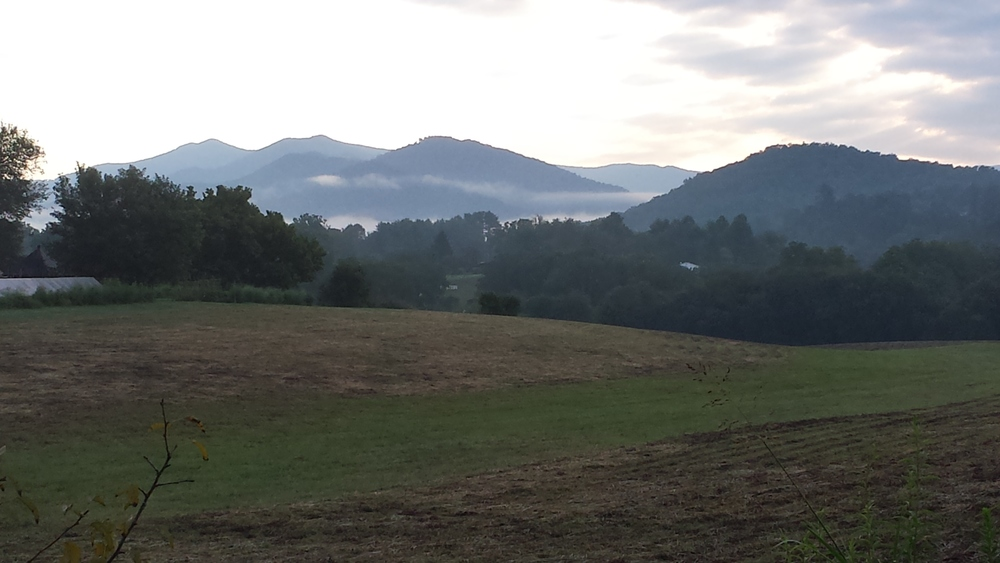 Misty morning at John C. Campbell Folk School
