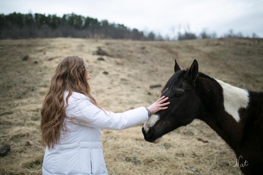 Audrey loves horses.