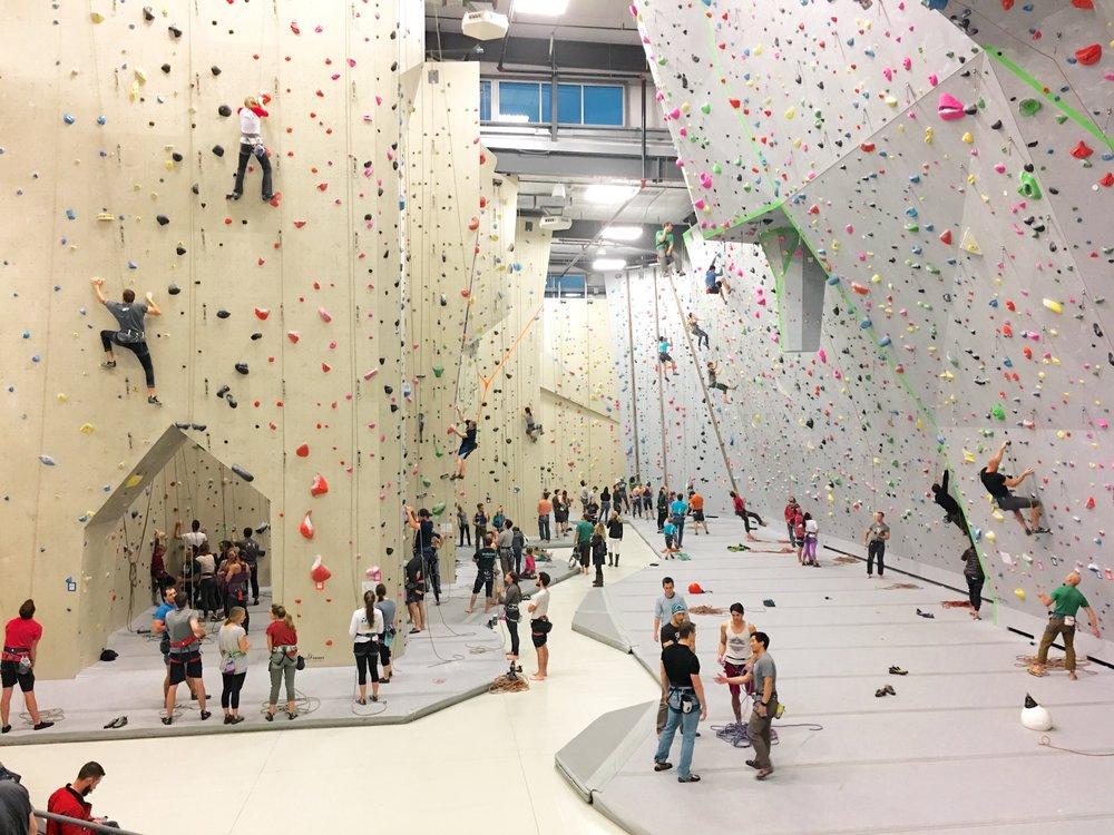 Movement Climbing + Fitness Denver