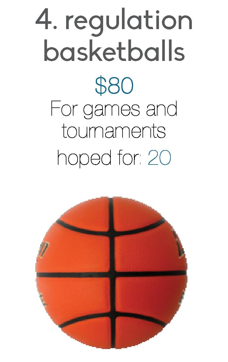 basketball blurb.png