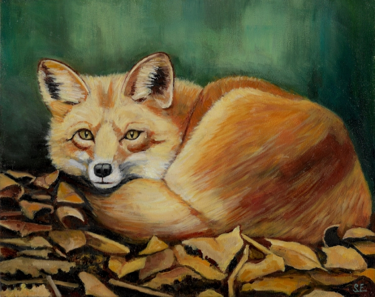 William's fox, oil on panel, 8x10 2016. This sweet fox was completed for my nephew William.