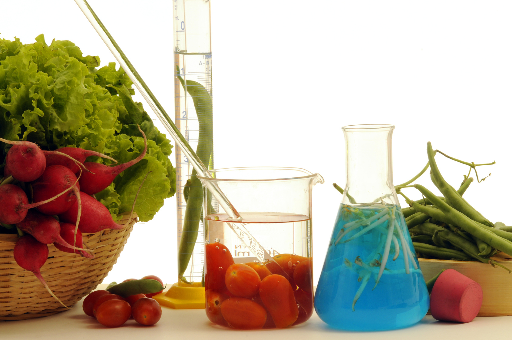 food preservatives Food preservation is the process of treating and handling food to stop or greatly slow down spoilage (loss of quality, edibility or nutritive value) caused or.