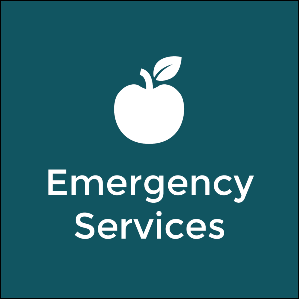 Emergency Services 18.png