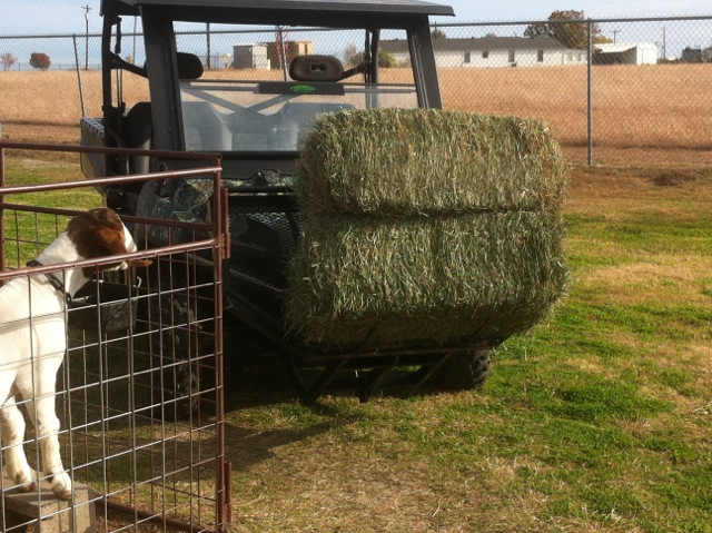 Use The OX Rack for farming.