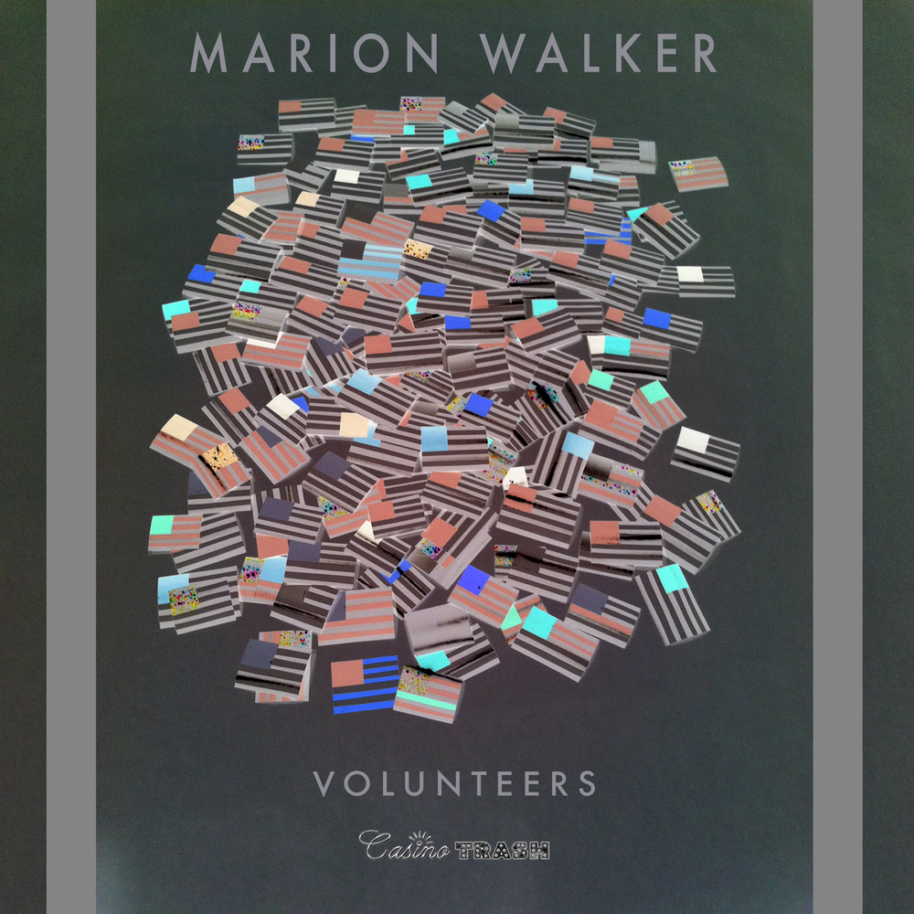 MarionWalker_Volunteers_coverart.jpg
