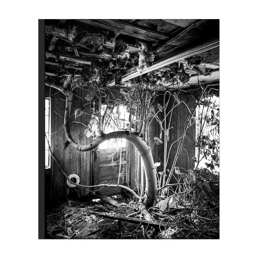 Lost II: Spruce Pine - Pre-Order HERE